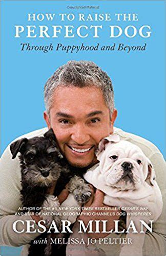 raising dogs with common sense books how to raise the through puppyhood and beyond