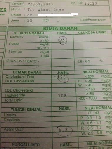 Alat Tes Darah Digital alat cek darah digital tidak akurat oleh ahmad imam