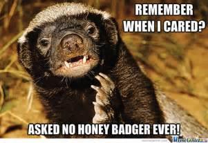 Honey Badger Don T Care Meme - honey badger don t care by letigonzbeigonz meme center