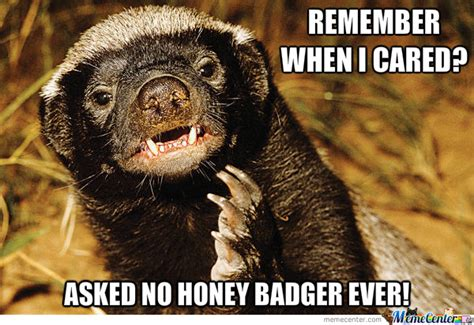 Honey Badger Don T Care Meme - honey badger don t care by letigonzbeigonz meme center