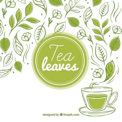 tea vectors   psd files