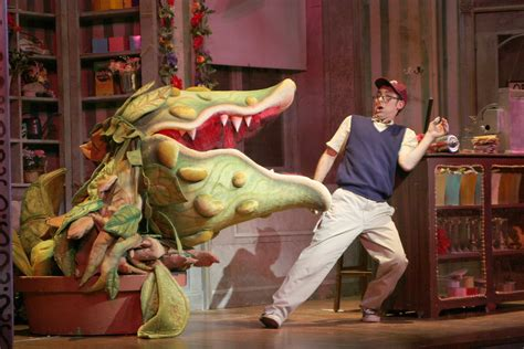 little shop of horrors musical wikipedia shops horror and little shop of horrors on pinterest