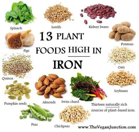 you iron best 25 vegetables high in iron ideas on