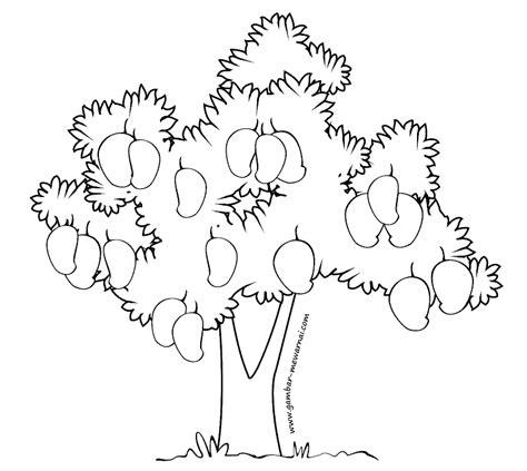 tutorial gambar pohon mangga mewarnai pohon mangga contoh gambar mewarnai