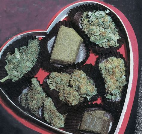 valentines gifts for stoners quot grow and give quot is a terrible plan for d c pot