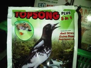 Harga Pakan Burung Topsong tak berkategori