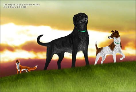 plaque dogs the plague dogs by virvapp on deviantart