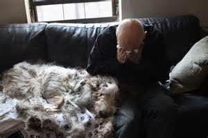 euthanasia at home veterinarian makes home visits to euthanize dying pets