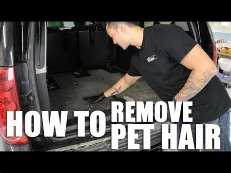 how to remove hair from car how to remove pet hair from your car doovi