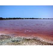 Pink Lake Retba Senegal  Feel The Planet