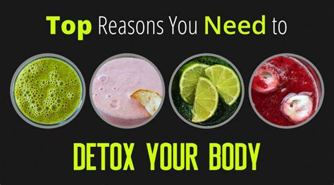 What Order Should You Detox Your by Top Reasons You Need To Detox Your Infographic