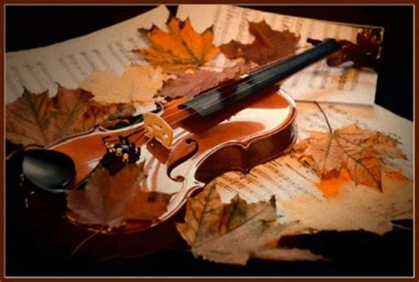 abstract violin wallpaper fall leaves violin photography abstract background
