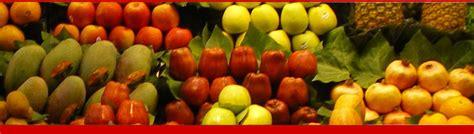 fimmg alimentazione fimmg alimentazione medicina degli stili di vita roma