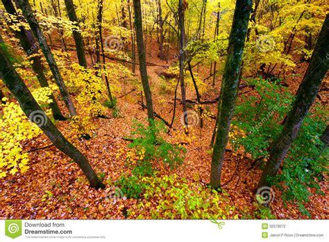 Landscape Rock Yorkville Il Beautiful Autumn Illinois Landscape Stock Photography