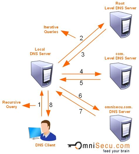 Dns by Dns Query Bing Images