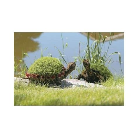 turtle topiary frame 17 best images about turtle topiaries on