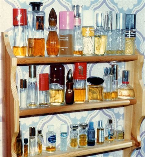 Shelf Of Perfume by Perfume Smells Like Cigarettes And Carrots
