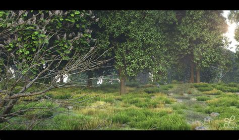render forest realistic forest environment cg lycodonfx portfolio
