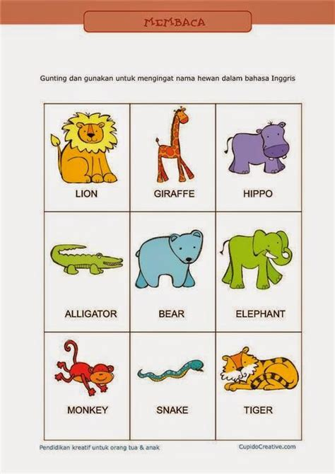 belajar bahasa inggris untuk anak tk sd kartu flash bahasa inggris untuk anak sd bergambar hewan