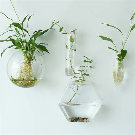 vasi da appendere vasi in vetro fito