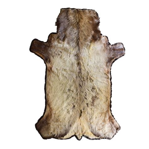 elk rugs for sale rug with lining elk taxidermy mounts for sale and taxidermy trophies for sale