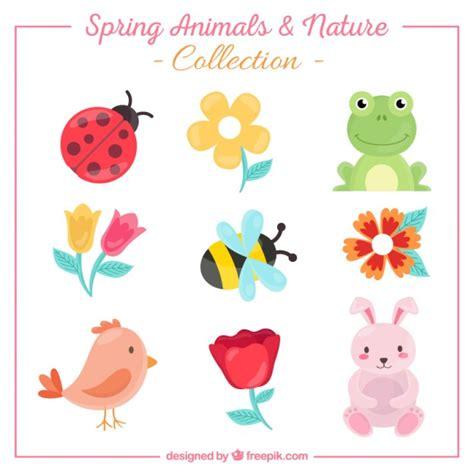 animali con fiori raccolta di simpatici animali e fiori scaricare vettori