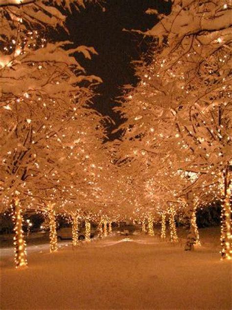 christmas lights in colorado springs photo albums
