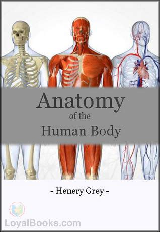 Anatomy of the human body by henry gray free at loyal books
