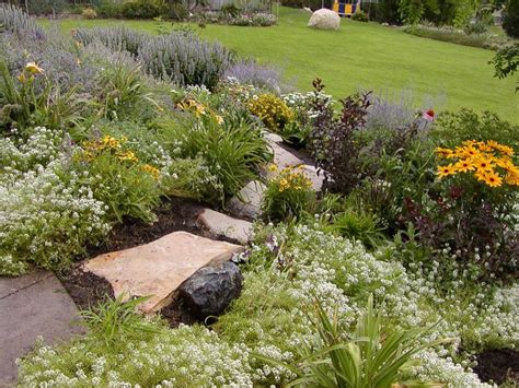 Xeriscape Landscaping Ideas Landscaping Xeriscaping Backyard Landscaping Ideas