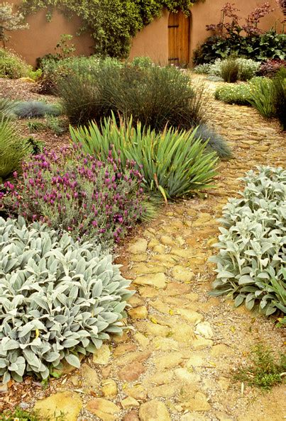 mediterranean backyard landscaping ideas mediterranean garden photos design ideas remodel and decor lonny