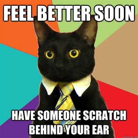 Funny Feel Good Memes - feel better soon have someone scratch cat meme cat