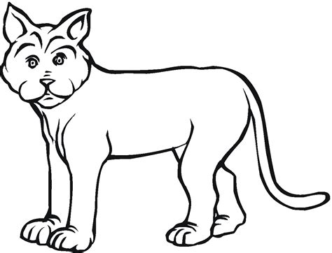 free coloring pages bobcat footprint cliparts co