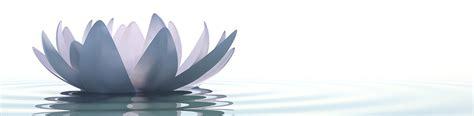 fior di loto torino crema naturale archivi essenze e detersivi alla spina