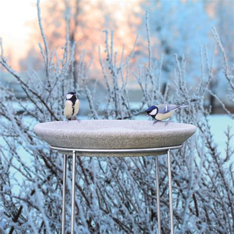 buy granicium 174 bird bath with stainless steel stand