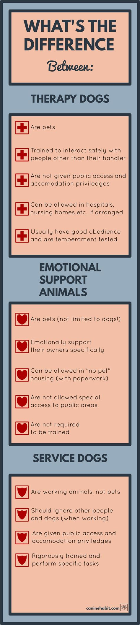 service vs therapy infographic service dogs vs therapy dogs vs esas canine habit
