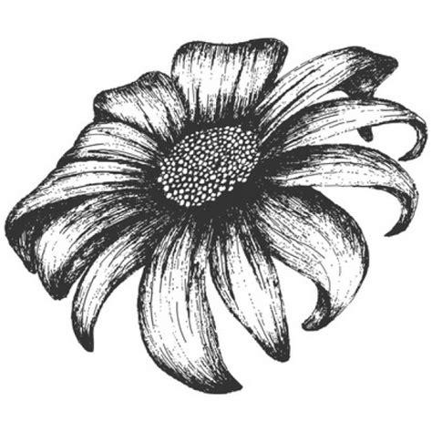 imagenes vintage blanco y negro para imprimir girasol de la vendimia en blanco y negro descargar