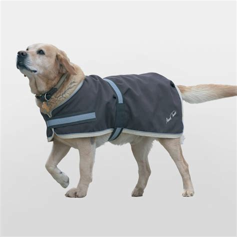 puppy coat waterproof coats photo 1 dress the clothes for your pets