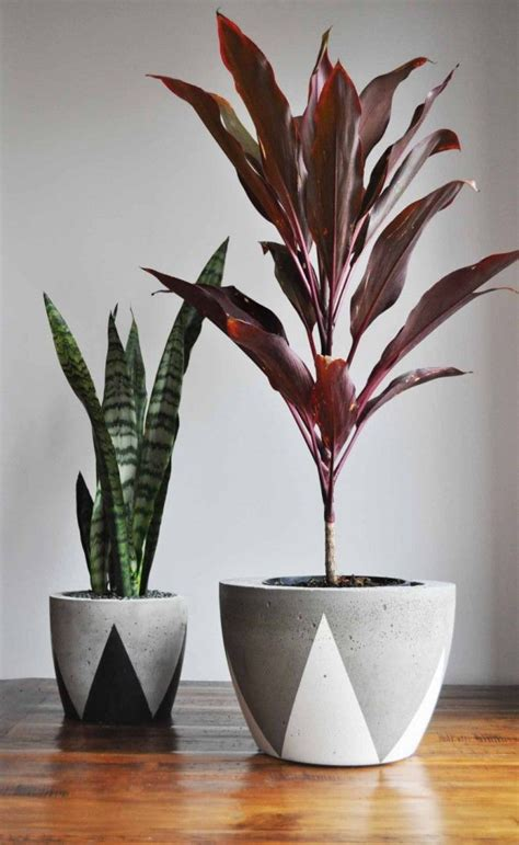 Indoor Flower Planters by 25 Best Ideas About Indoor Plant Pots On