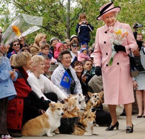 queen elizabeth dog queen s favourite breed of dog is back in fashion in her