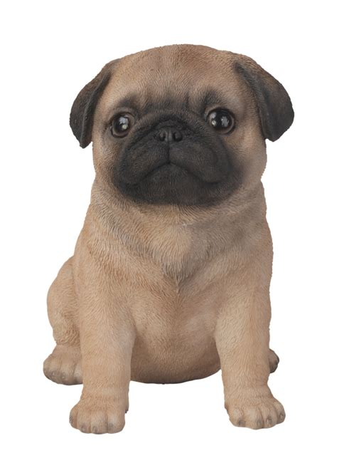 Garden Patio Heater Pet Pal Pug Puppy Resin Garden Ornament 163 10 99