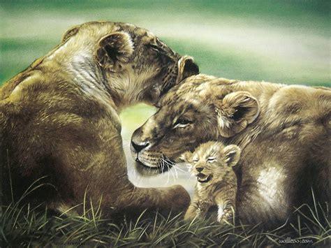 painting animals lesley harrison animal paintings animal paintings