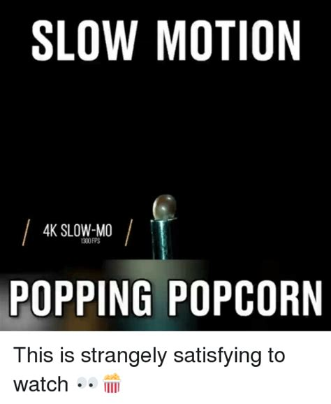 Motion Memes - 25 best memes about slow mo slow mo memes