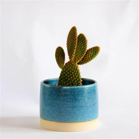 cactus pots grey plant pot cactus pot succulent pot plant container