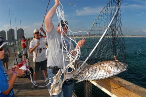 pier fishing net landing a pier redfish pier 96 stock photography by