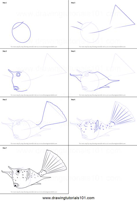 how to drqw how to draw a longhorn cowfish printable step by step
