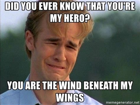 Hero Meme - did you ever know that you re my hero you are the wind
