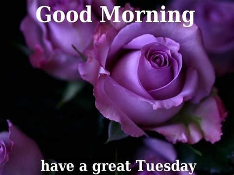 ? Top 53 Tuesday images, greetings and pictures for