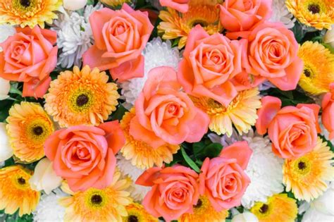 fiori bellissimi foto bellissimi fiori per san valentino e scena di nozze
