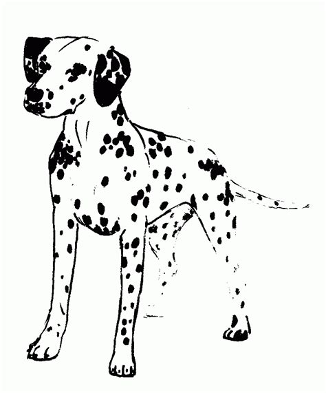 dalmatian puppies coloring pages dalmatian coloring page coloring home