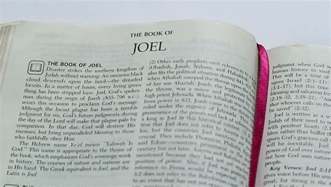 jo scrabble definition joel definition meaning